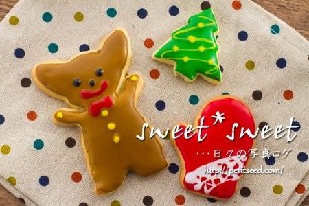 藤野真紀子さんのギズモクッキー